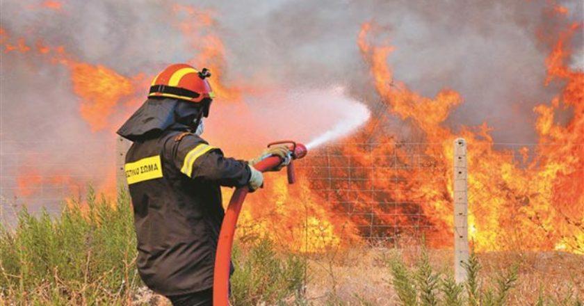 φωτιά - e-thessalia.gr